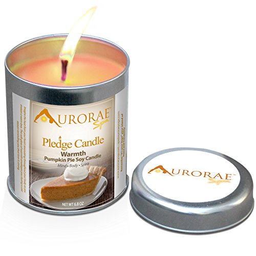 Pumpkin-Pie-Scented-Soy-Candles-by-Aurorae-All-Natural-Meditation-Candles-Soy-Wax-Clean-Burn-Aromatherapy-Non-Toxic-Warmth-Pumpkin-Pie-68-oz-0-0