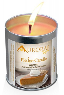 Pumpkin-Pie-Scented-Soy-Candles-by-Aurorae-All-Natural-Meditation-Candles-Soy-Wax-Clean-Burn-Aromatherapy-Non-Toxic-Warmth-Pumpkin-Pie-68-oz-0